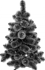 Где купить новогоднюю ёлку в Санкт-Петербурге?