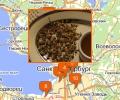 Где находятся гомеопатические аптеки в Санкт-Петербурге?