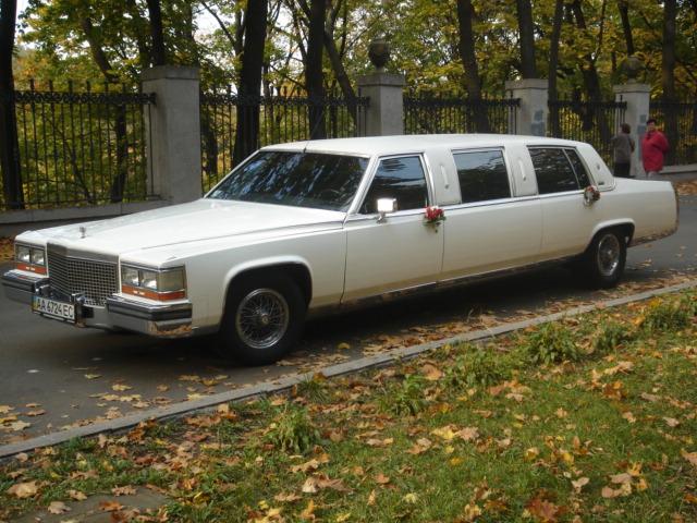 Где взять лимузин на прокат в Санкт-Петербурге? Аренда авто.