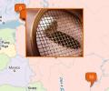 Где поиграть в большой теннис в Санкт-Петербурге?
