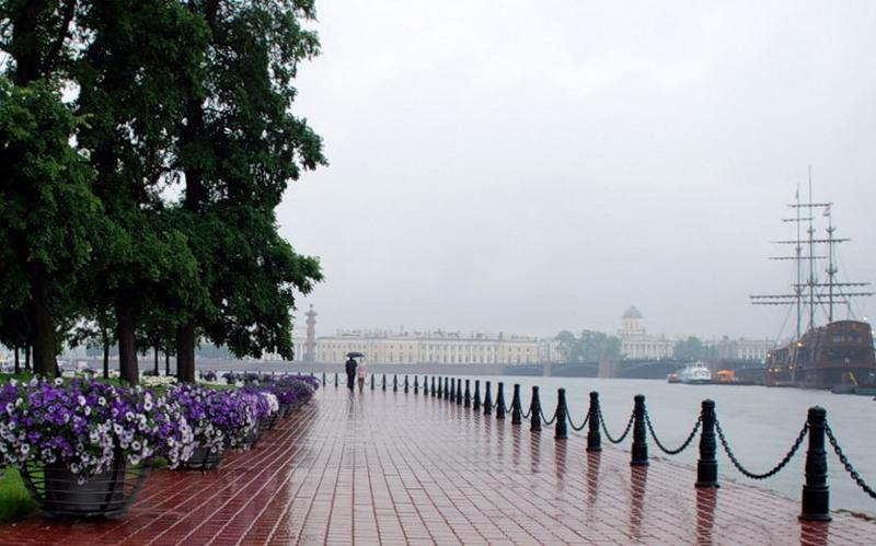Какой в Санкт-Петербурге климат?