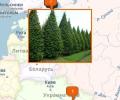 Где купить крупномеры в Санкт-Петербурге?