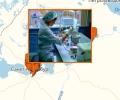 Где находятся ветеринарные лаборатории в Санкт-Петербурге?