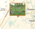 Площадка для игры в страйкбол Лесная поляна